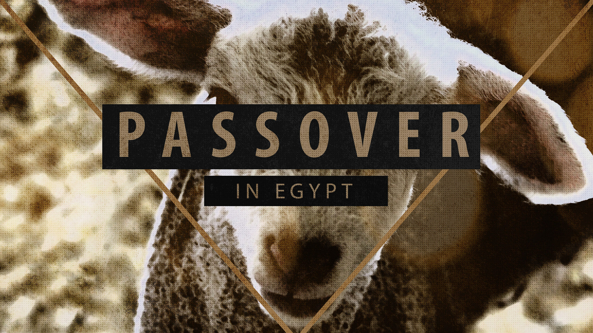Passover in Egypt | Messianic Passover Teaching Series