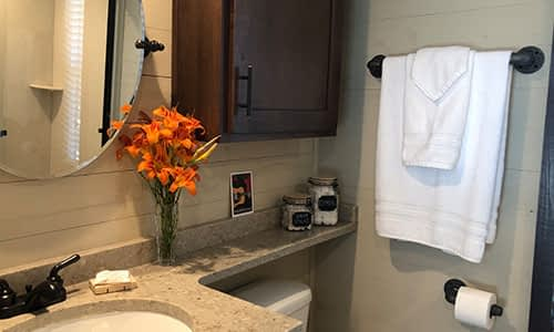 tiny house full bath with amenities