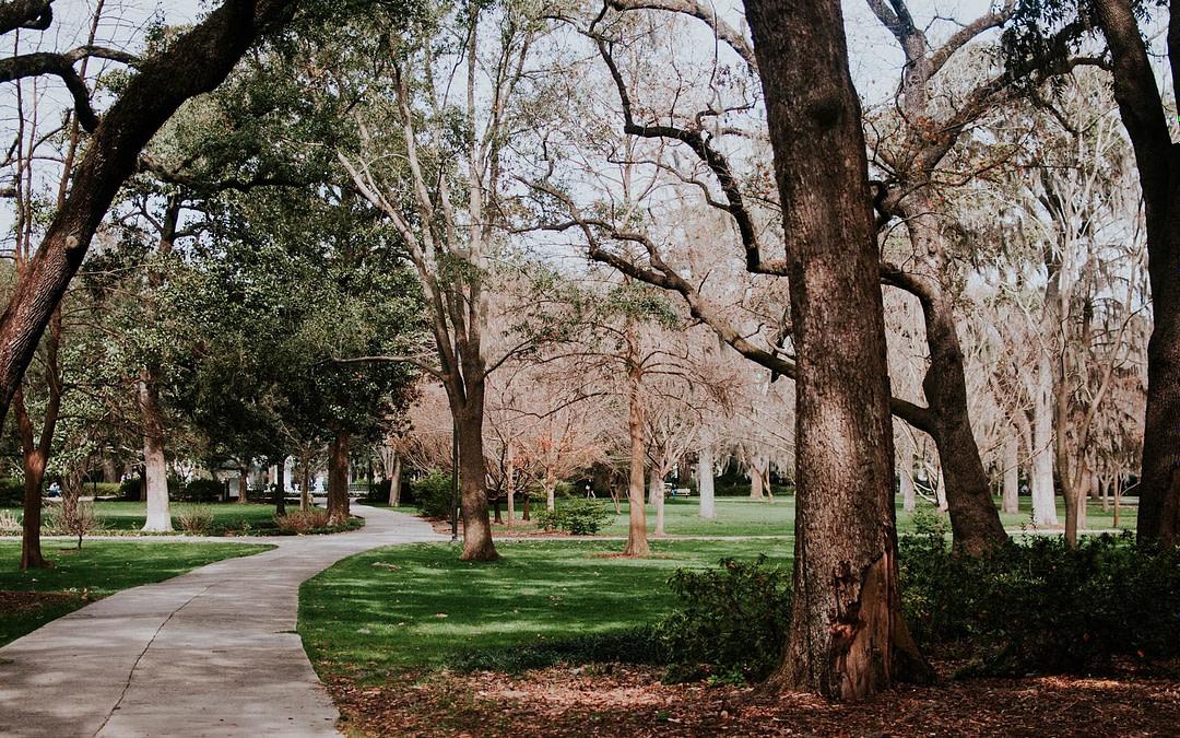 RVing in Savannah, GA