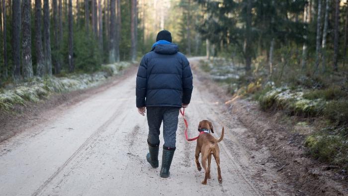 man walking dog down a dirt road