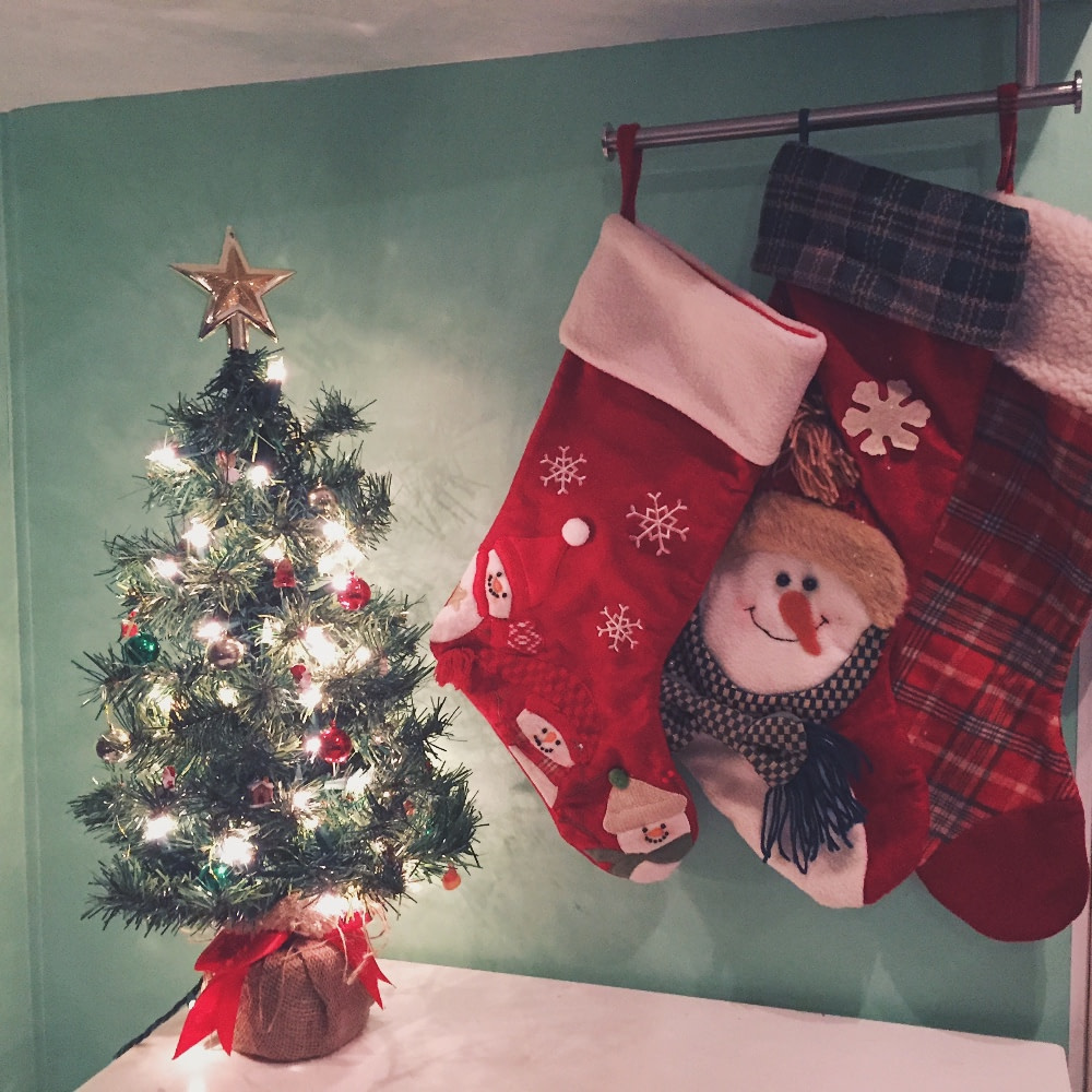 Christmas Tree in RV