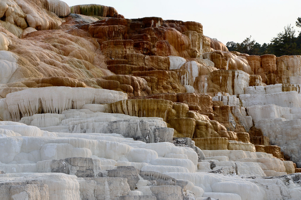 Mammoth Hot Springs Things to See in Yellowstone