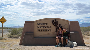 Mojave National Preserve camping