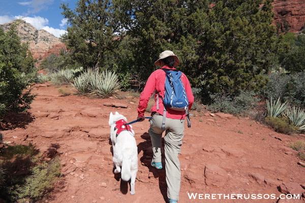 Ruffwear Web Mast Review - Walking