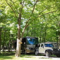 Tranquil Timbers full hookup site TL21