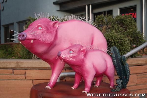 Sedona Pigs
