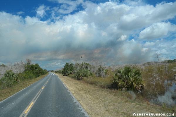Everglades National Park drive
