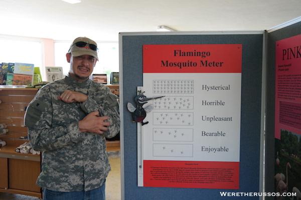 Flamingo Visitor Center Everglades Mosquito Meter