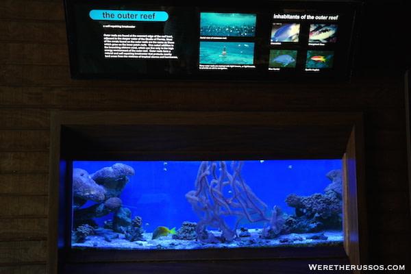 John Pennekamp State Park Aquarium