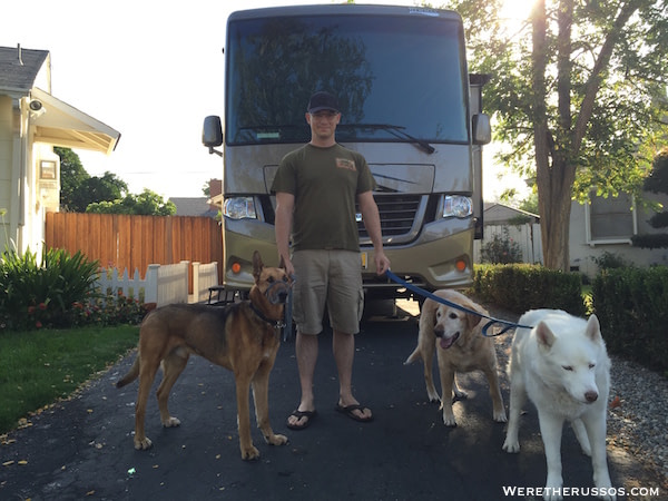 Introduce dogs to RV