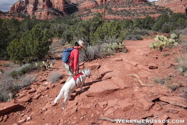 Ruffwear Web Mast Review - Climbing