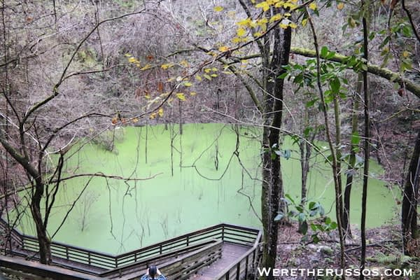 Devil's Millhopper State Park gainesville, florida