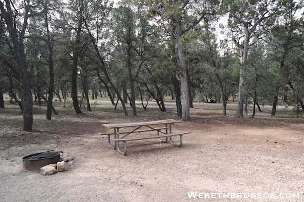 Mather Campground Picnic Table Fire Ring