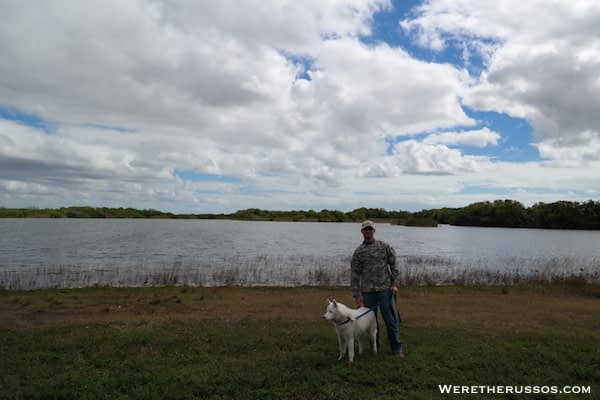 Nine Mile Pond Everglades
