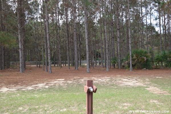 Thousand Trails Orlando dog park