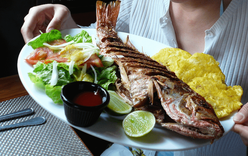 Travel guide: Panama - red snapper