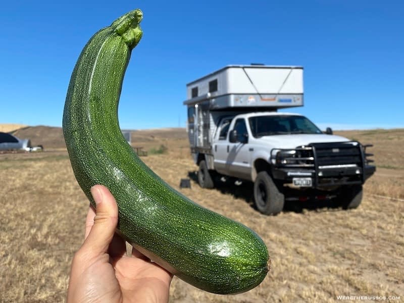 Harvest Hosts Review - Camping on a Farm in Washington